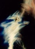 'Уранийка. Матерь Молнии' - фрагмент картины А. Рекуненко 'Древо Жизни. Неопалимая Купина'