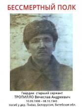 Тропилло Вячеслав Андреевич